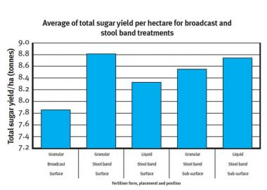 Graph showing average of total sugar yield per hectare for broadcast and stool band treatments.