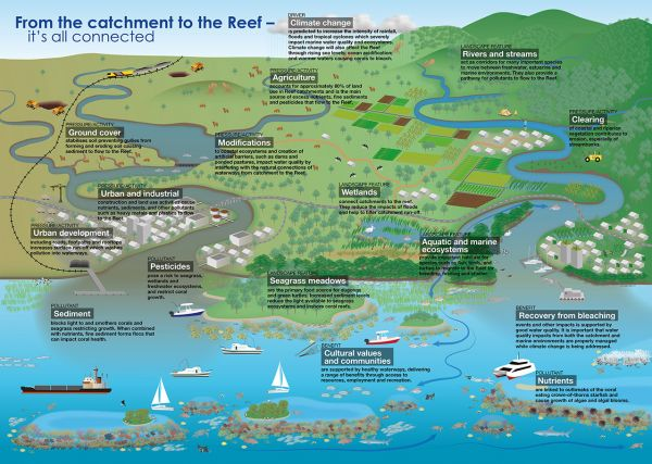 Diagram of the connected ecosystem of the Great Barrier Reef