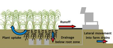 Diagram of crop run-off